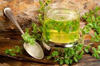 bacopa plant and glass of bacopa tea