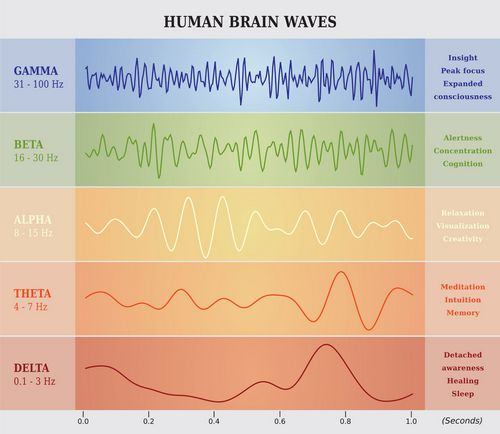 chart showing human brain waves and corresponding cognitive characteristics