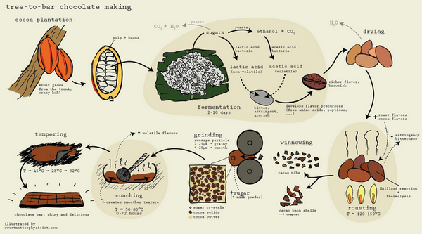 diagram of chocolate making process
