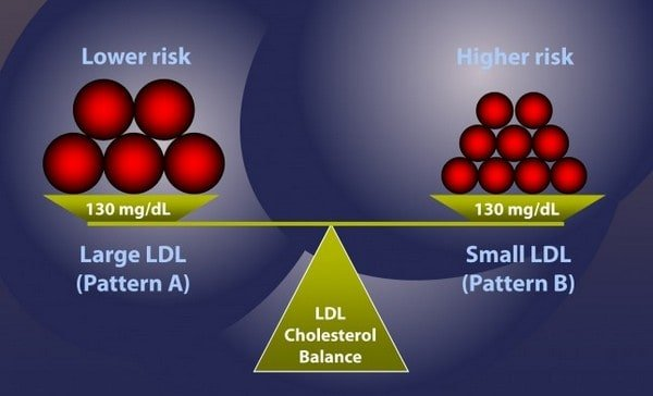 graphic showing relationship between ldl cholesterol size and heart disease risk