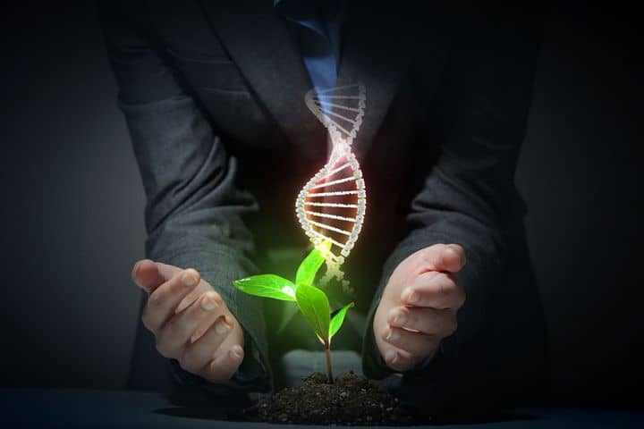 photo of hands embracing a plant and a dna strand