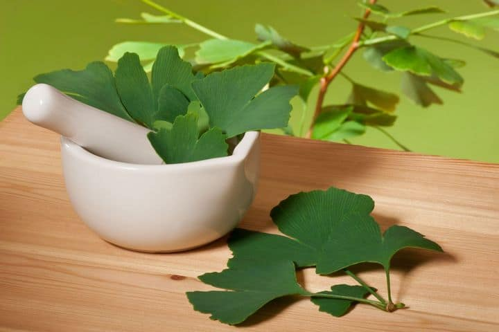 ginkgo biloba leaves with mortar and pestle