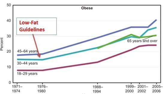 low fat guidelines vs obesity graph