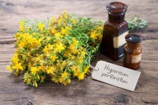 photo of st john's wort flowers and supplements
